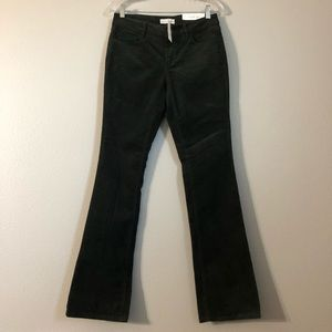 NWT Loft Forest Green Corduroy Curvy Boot Cut Pant
